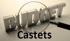 Budget 2015 loupe